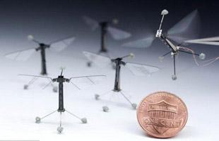 科学家研制机器人蜜蜂 每秒翅膀拍打120次