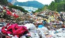 調查稱多地鮮見有人回收發泡食具解禁已有一月