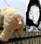 南京女童饿死事件谁该被问责