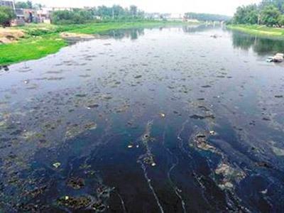 北京沙河水库清理出垃圾1500余吨(图)