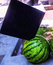 学士帽切西瓜令人目瞪口呆 毕业生用生命在拍照