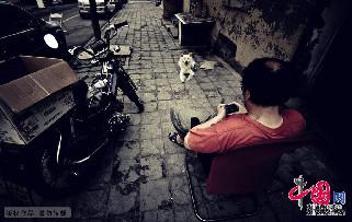 2013年7月14日,青岛。博山路,悠闲的生活是老青岛人的习惯。中国网图片库 王海滨摄影