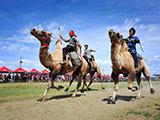 """新疆农牧民趣味运动会:骆驼大赛""""姑娘追""""[组图]"""