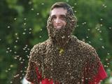 """加""""蜜蜂胡子""""大赛上万只蜜蜂爬满脸"""