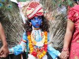 尼泊尔庆祝神牛节