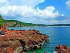 涠洲岛 红海榄 红树林植物 鼓虾 桐花树 国家级海洋类型自然保护区 最美丽的地方 银滩 三婆庙 南珠