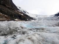 加拿大哥伦比亚冰原