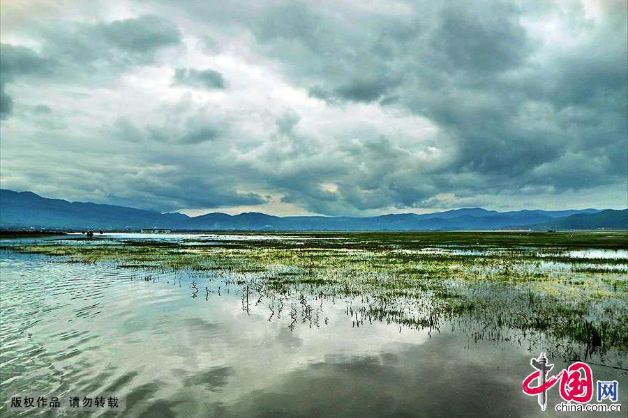 云南丽江,高原湿地自然保护区拉市海风光。中国网图片库 肖远泮/摄