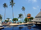 海岛旅游 景色 热带作物 海岛风情 海岛度假 东南亚 异域 PP岛 苏梅岛 沙巴