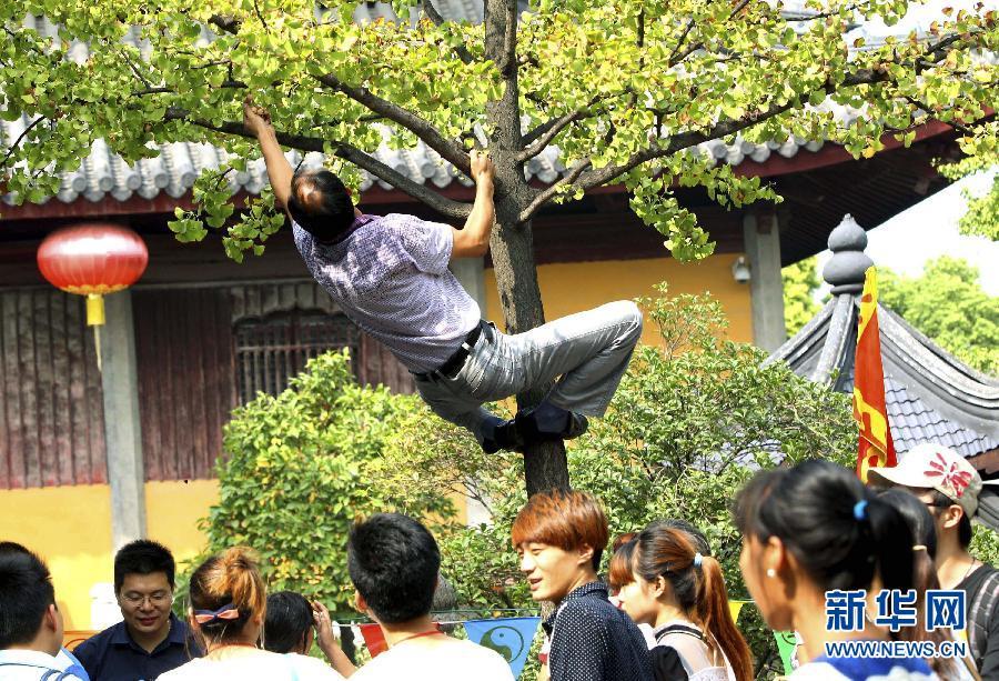 10月1日,一名游客在苏州市玄妙观入口处攀爬上银杏树采摘银杏。当日是国庆长假第一天,一些游人在旅游景点随意攀爬、乱刻乱画、乱丢垃圾,成为旅游的不和谐音符。