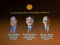 美德三名科学家分享2013年诺贝尔生理学或医学奖 [组图]