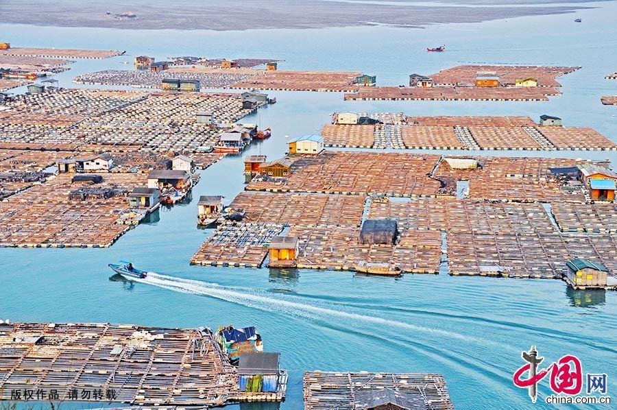 """霞浦的海上渔排有""""海上威尼斯""""之称。""""海上人家"""",就是渔民在海上养殖的场所。 中国网图片库 肖远泮/摄"""