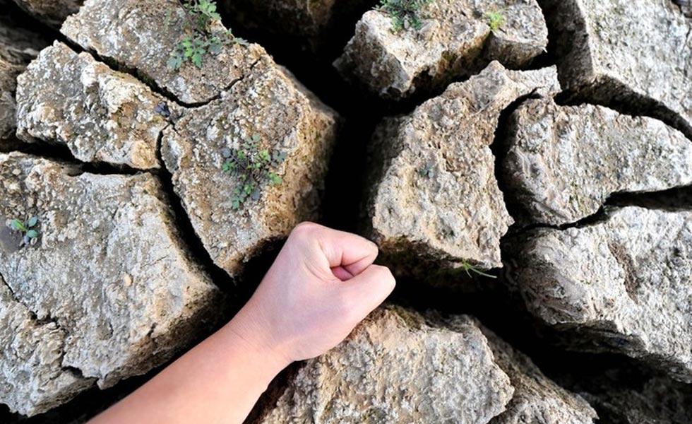全国多地遭遇旱情 河床干裂可放入拳头