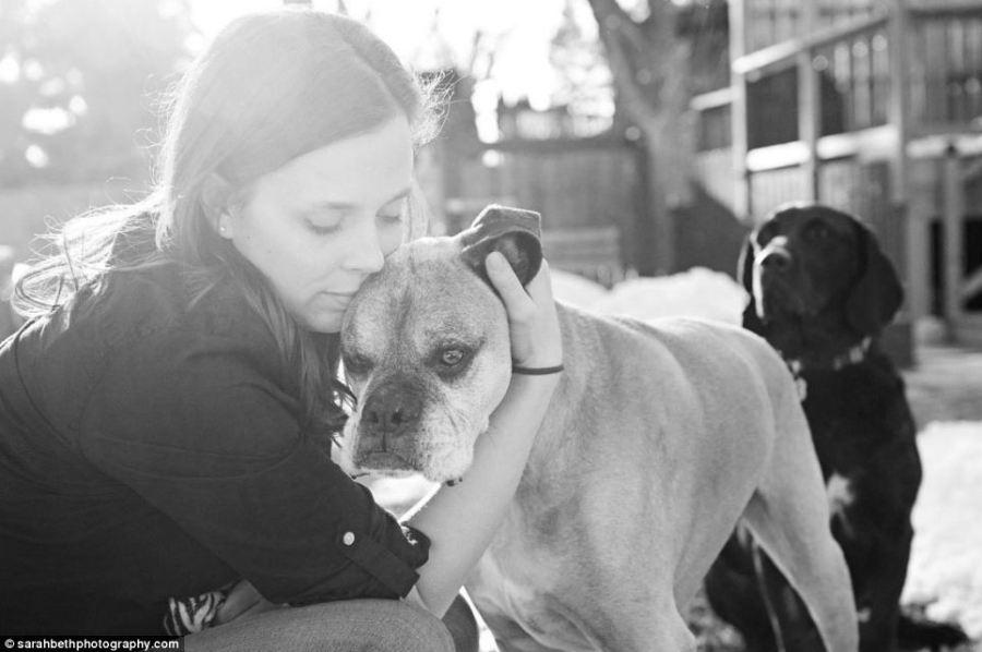 """宠物 主人/""""临终照片""""中的宠物都是因为衰老或疾病而即将离世。"""