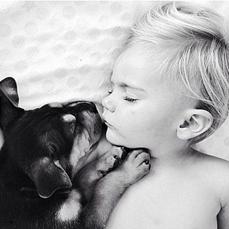 狗狗,时光,宝宝,萌照,搞笑图片