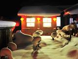 中国雪乡夜色[组图]