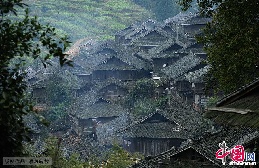 岜沙村地处贵州省黔东南州从江县,这里植被完好,古树参天,至今保持着原始的生态环境。岜沙的寨子建在山上,依坡就势搭起富有民族特色的木制杆栏式吊脚楼。 中国网图片库 赖鑫琳/摄