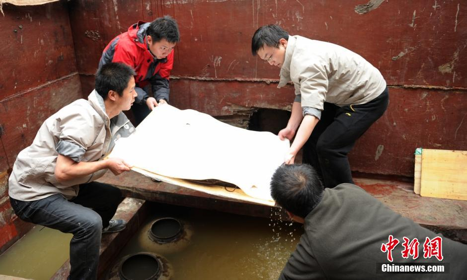 成都老官山汉墓发现约医简 确认为扁鹊学派失传医书
