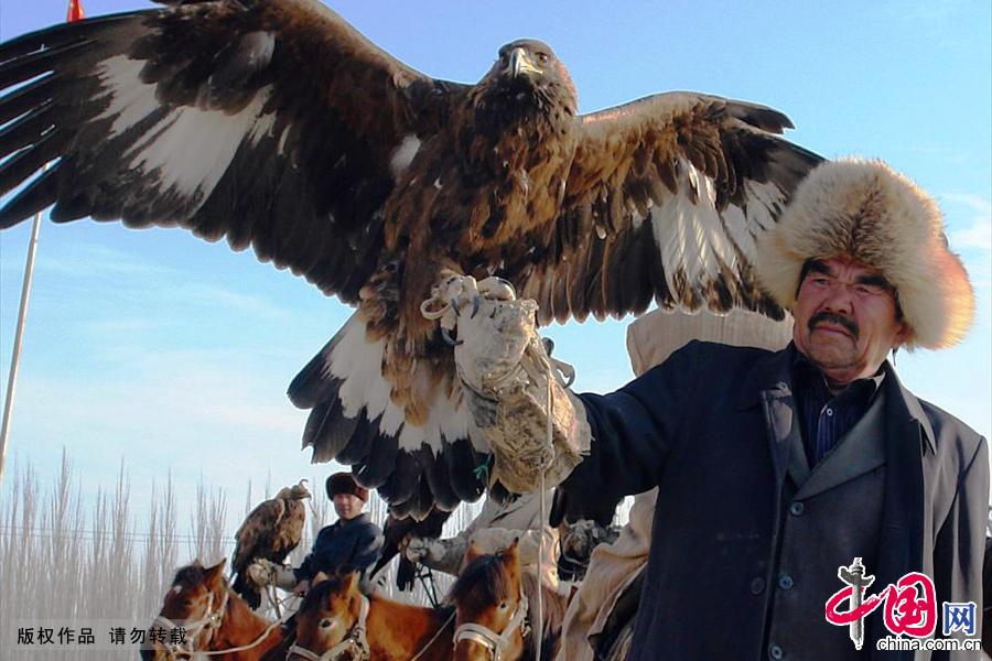 """""""猎鹰之乡""""一名猎户展示自己心爱的猎鹰。中国网图片库 姜晓明/摄"""