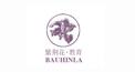 紫荊花·教育