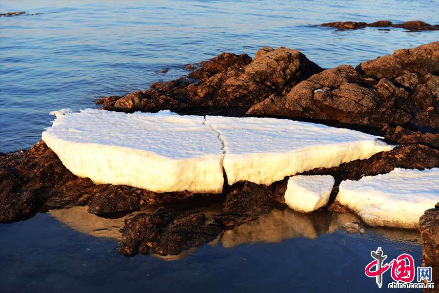12月29日,山东青岛胶州湾初现的海冰。中国网图片库