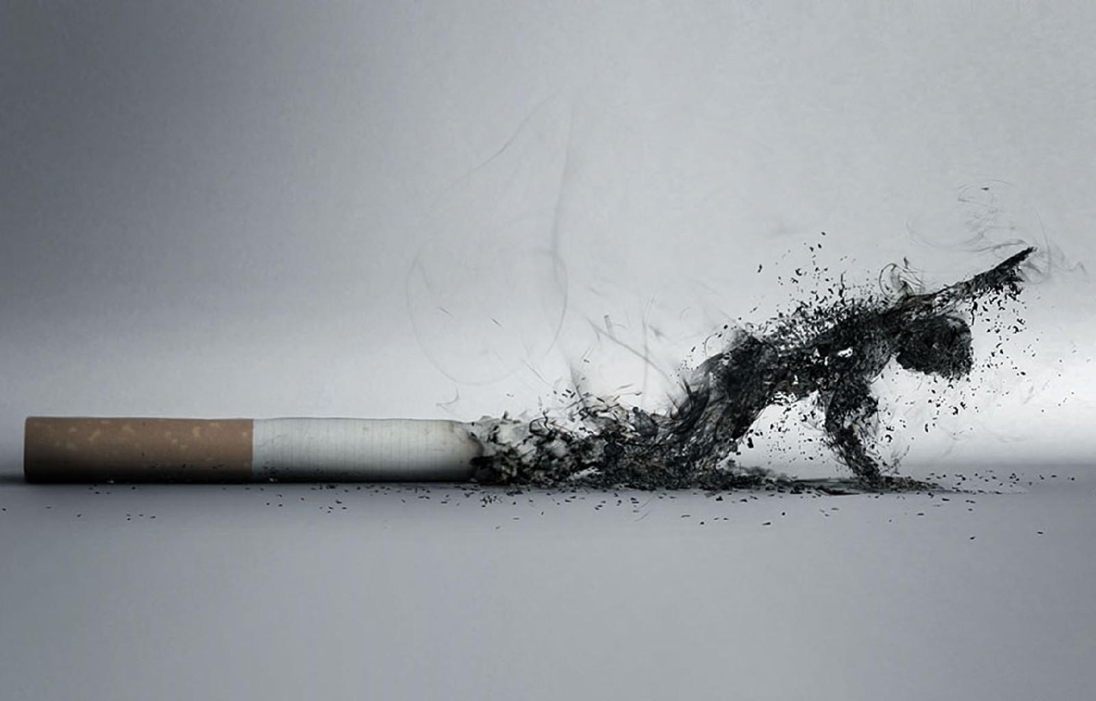 禁烟令的净化力