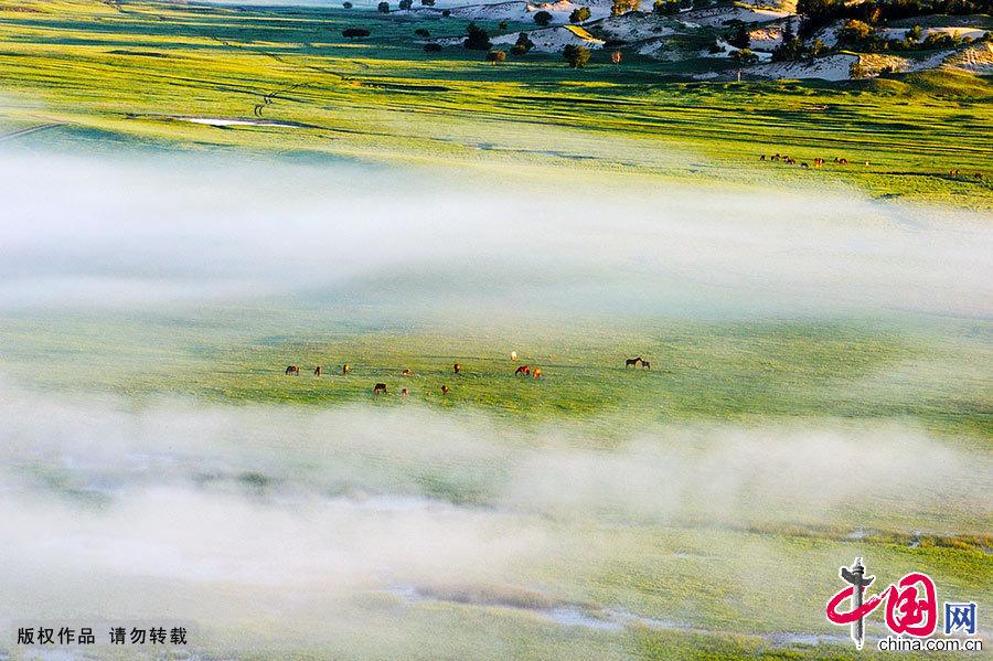 阿尔山的春天融化了冰封的记忆。远处还残存着未融化的冰雪,万物复苏在一派春光明媚之中。晨曦下、暮霭中一幅色泽清丽,韵味悠长的丹青水墨展现在人们面前。 中国网图片库 王伟/摄