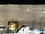 嫦娥三号着陆器地形地貌相机拍摄月球影像图[组图]