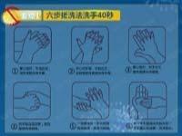 17個要點預防禽流感