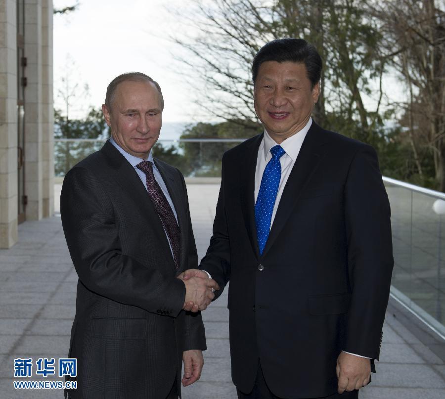 习近平会见俄罗斯总统普京[组图]