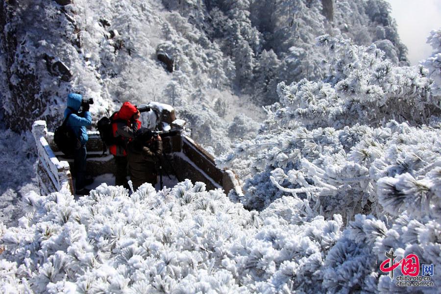 安徽:黄山雪凇奇观 美景震撼人心[组图] - 人在上海    - 中華日报Chinadaily