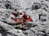 安徽:黄山雪凇奇观 美景震撼人心[组图]