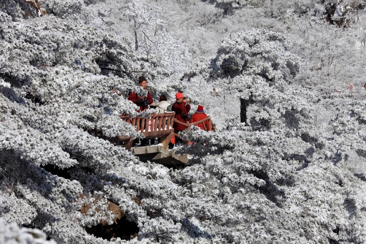 雪凇奇观 美景震撼人心