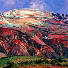红土高原--云南东川红土地[组图]