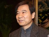 委员王次炤:专业艺术教育和国民艺术素质教育是两个概念