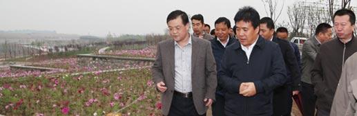 乔高社调研沣河及沣东现代都市农业示范基地项目
