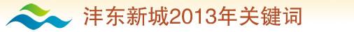 沣东新城2013年关键词