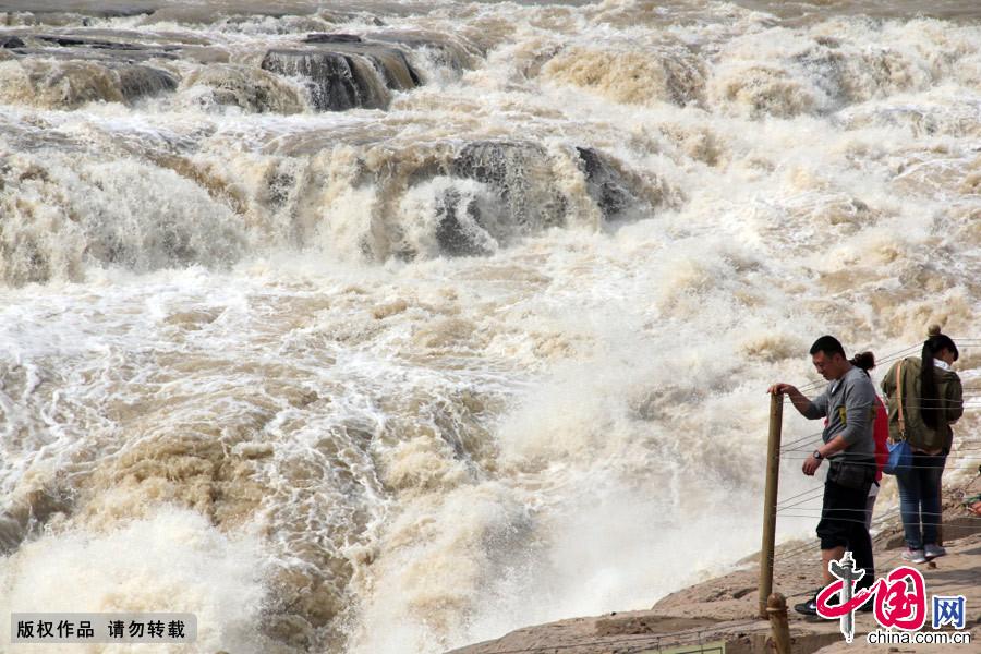 黄河,壶口瀑布,桃花汛,山西,旅游,春汛,