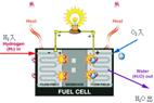 裴普成教授详解燃料电池分类