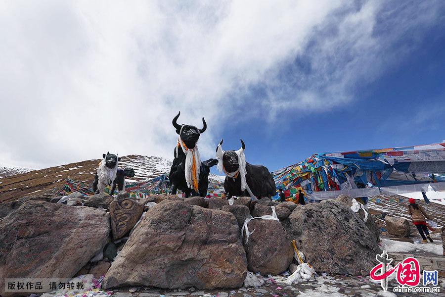 西藏米拉山口雪景。中国网图片库 颜闽航/摄