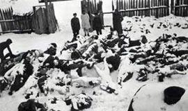 揭秘二战初期苏芬战争