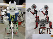 """中外智能机器人""""大闹""""科博会"""