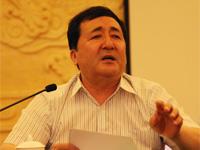 """伊那木•乃斯尔丁:以建设""""丝绸之路经济带""""为契机推进新疆旅游发展"""