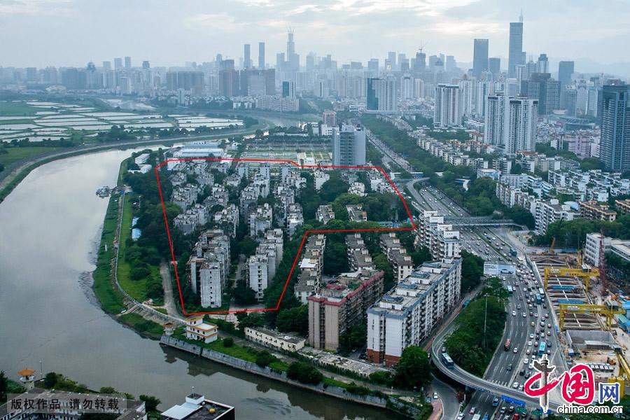 2014年5月,深圳 鹿丹村 海砂房 拆迁 争议 重建 改造