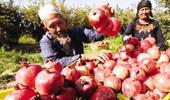 南疆發展規劃