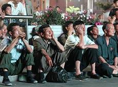 朝鮮球迷廣場觀戰世界盃