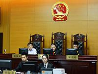 宗庆后首次作为人民陪审员出庭审案[组图]