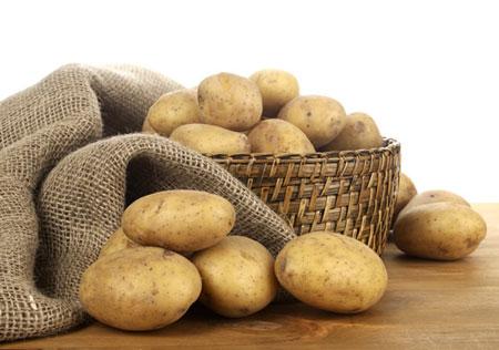 土豆 人口_土豆发芽图片