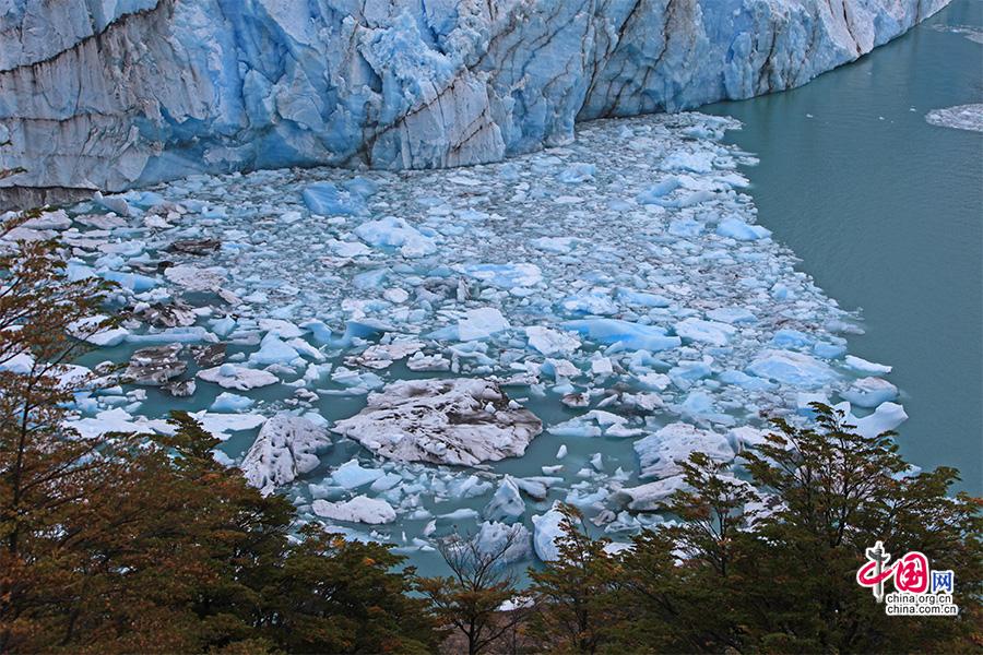 冰川与半岛间崩裂下的碎冰非常多