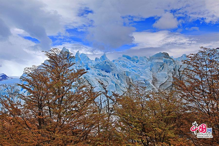 山毛榉间的冰川